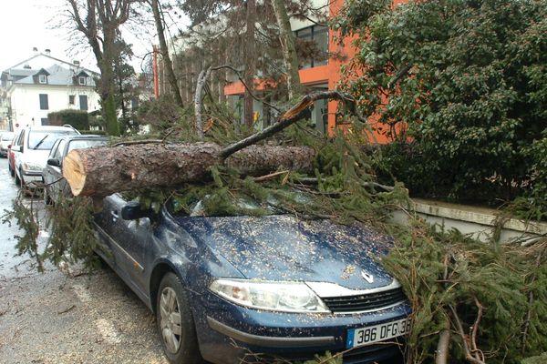Photo d'illustration- Le risque de chute d'arbres est très fort, tous aux abris !