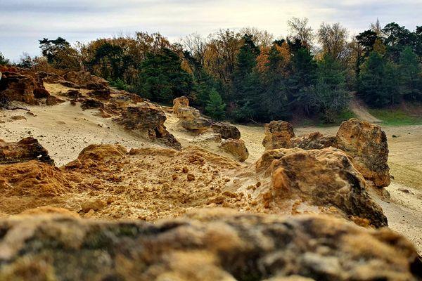 Ces blocs de grès comportent des traces de palmiers fossilisés de l'ère tertiaire.