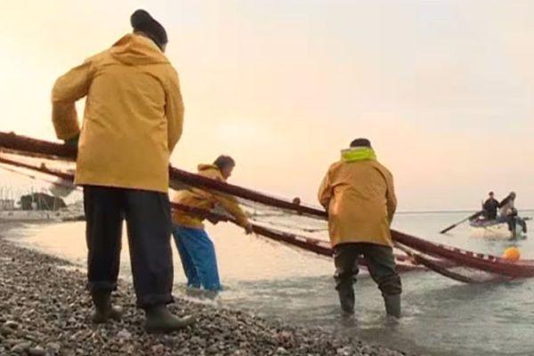 La tradition de la pêche à la poutine se perpétue au port du Cros-de-Cagnes.