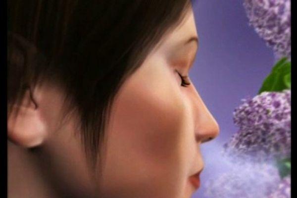 Vers un nez électronique pour ceux qui ont perdu l'odorat