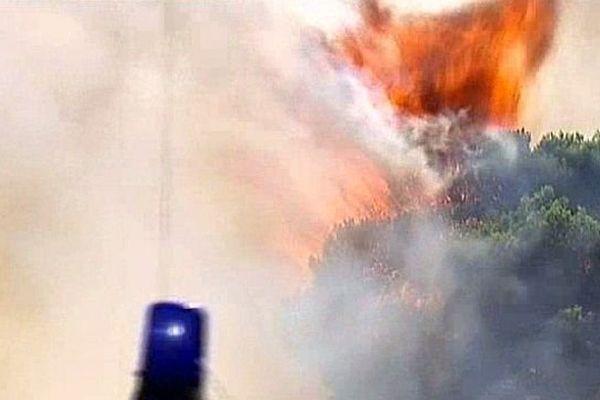 Peyriac-de-Mer (Aude) - le feu ravage 500 hectares - 30 juillet 2014.