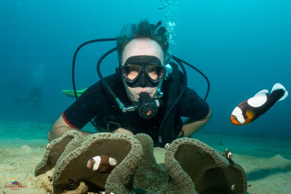 Vincent Laudet, professeur en sciences marines, en pleine action