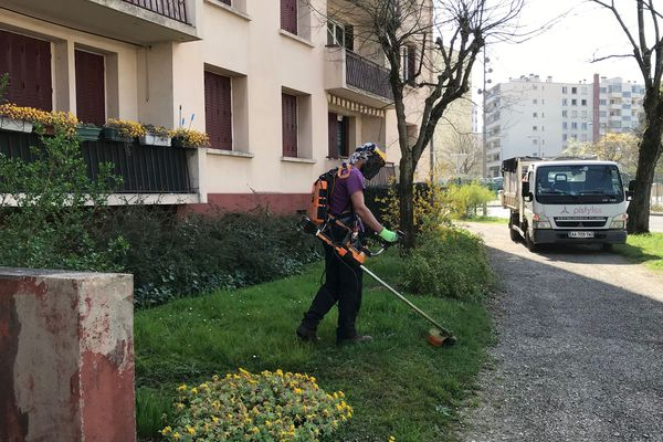 L'un des jardiniers en intervention dans l'espace vert d'une copropriété de Villeurbanne ce jeudi 19 mars