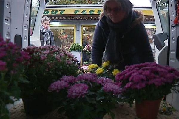 Approvisionnement en chrysanthèmes pour la Toussaint