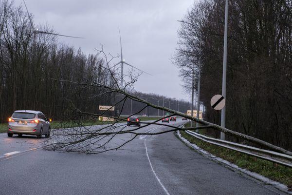 Des vents violents sont annoncés sur la Normandie dans la nuit du mercredi 20 au jeudi 21 octobre.