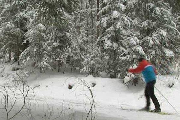 Ski de fond au Winkel