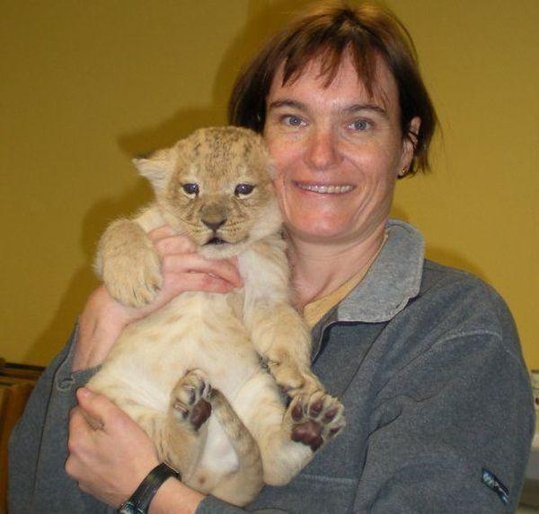 Florence Ollivet-Courtois, vétérinaire