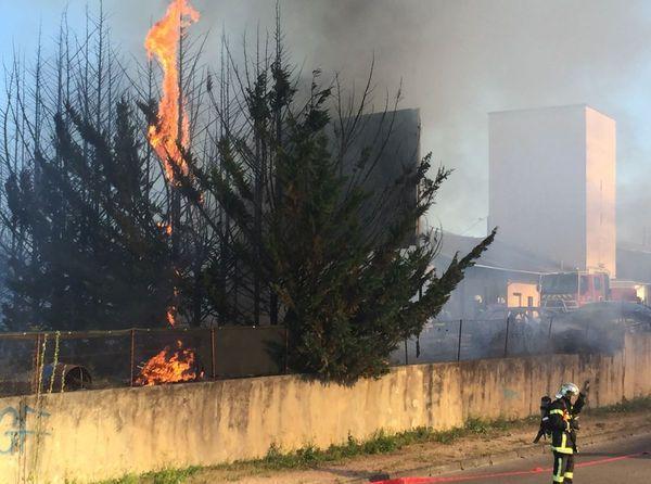 Avec la sécheresse qui règne actuellement sur la région, les risques d'incendie sont importants.