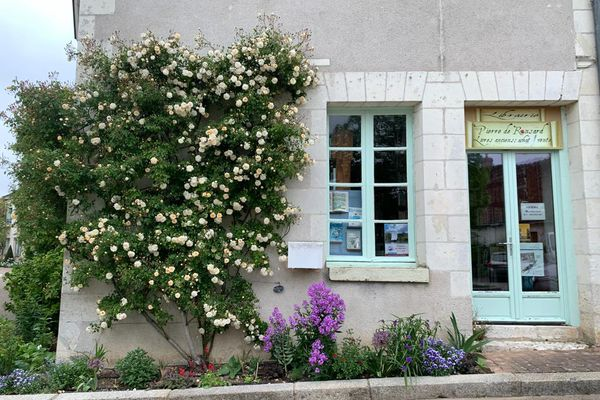 La librairie de Chédigny et son rosier grimpant le long de son mur