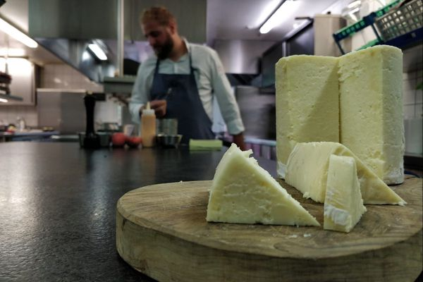 Le persillé de Tignes est un produit typique de la Tarentaise.