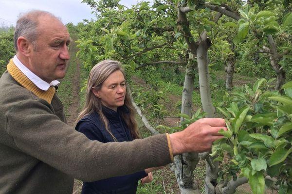 Les producteurs de fruits par exemple redoutent le gel des bourgeons.