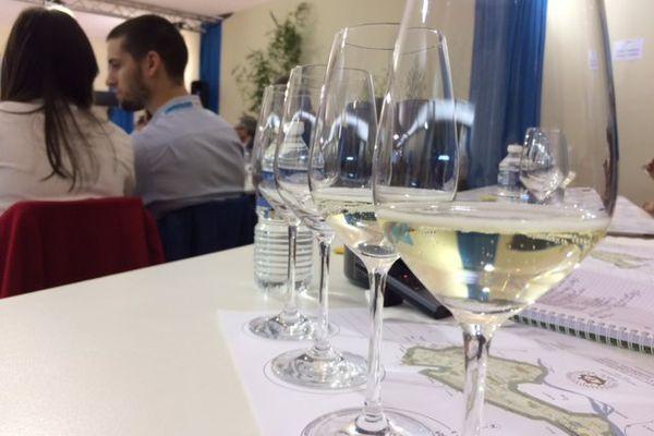 Le salon vinisud a ouvert ses portes aujourd'hui, il attire de plus en plus de femmes - 29 janvier 2017