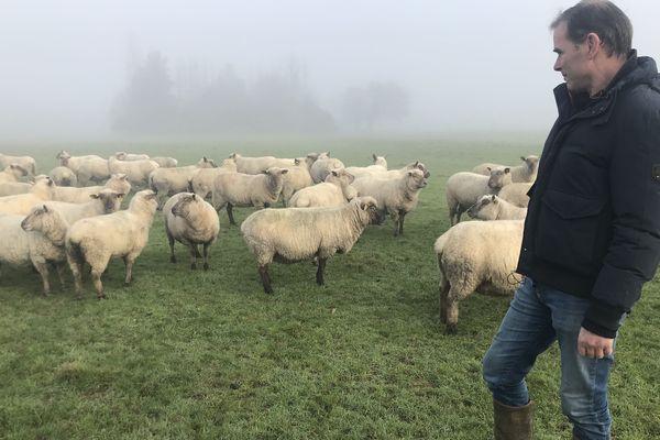 Sébastien Héas se fait voler entre 75 et 100 brebis tous les ans sur son élevage de Ligné en Loire-Atlantique
