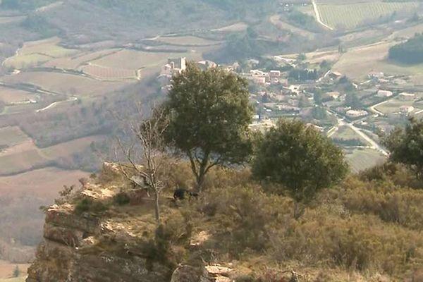 Bourièges (Aude) - la construction de 6 éoliennes sur une colline surplombant le village a débuté - 2017