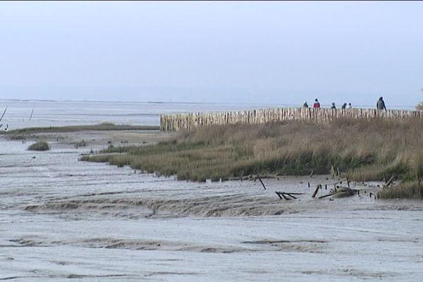 Le littoral aquitain à Audenge. Photo d'illustration