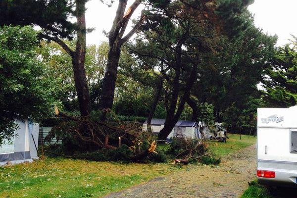 Des branches sont tombées au camping municipal de Cancale, évacué lundi