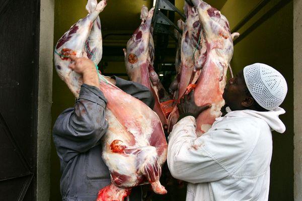 Le sacrifice de l'animal, lors de l'Aïd-el-adha, n'est pas autorisé en-dehors d'un abattoir agréé, comme celui-ci.