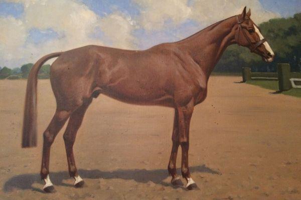 """Peinture du cheval Iris XVI, fusillé en 1940 par les Allemands pour """"rébellion"""""""
