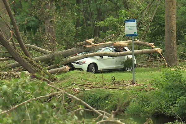 La tempête de vendredi a fait d'importants dégâts, qu'il s'agit désormais de déblayer.