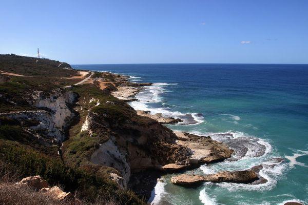 1200 aires marines protégées couvrent actuellement 8,9% de l'ensemble de la Mer Méditerranée, qui abrite de nombreuses espèces menacées
