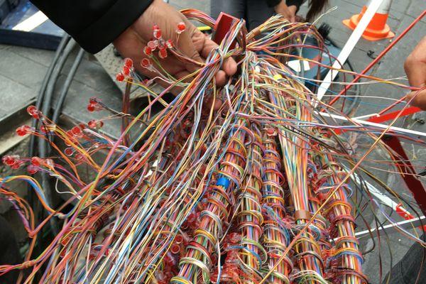 Dans l'armoire située au Bouffay, des milliers de câbles doivent être changés et raccordés par les techniciens de Orange.