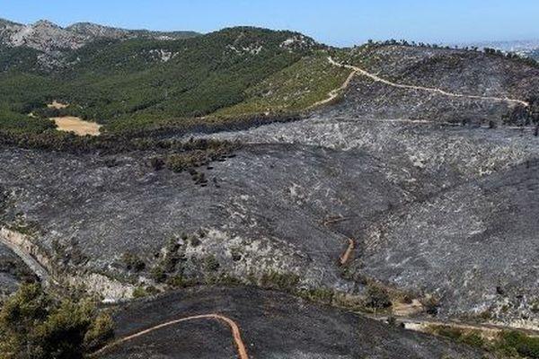Les pompiers du 13 veulent sensibiliser la population sur les risques sévères de feux de forêt à partir d'aujourd'hui et tout le week-end.