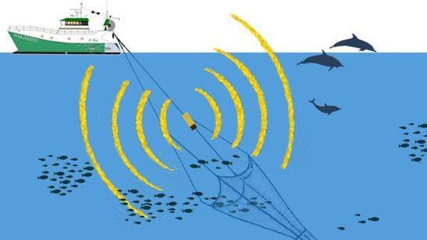 Concept de dispositif acoustique pour éviter la capture de dauphins