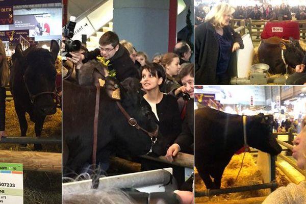Filouse, star des selfies au salon de l'agriculture 2015.