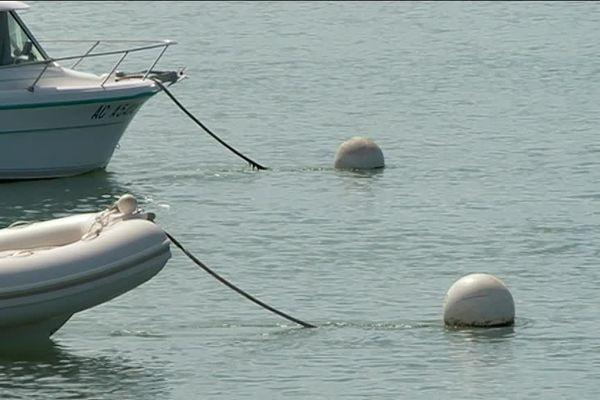 Sous les flotteurs, des chaines reliés à un lest. Ces chaînes peuvent être destructrices pour les fonds marins, notamment les herbiers d'algues.