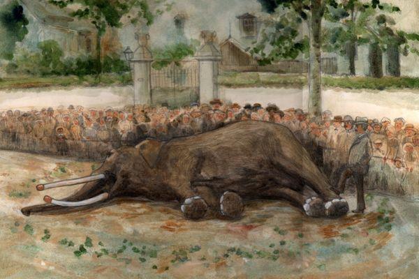 Fritz mort à Tours, place Nicolas-Frumeaud