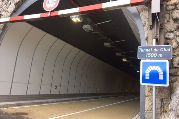 Le tunnel du chat.