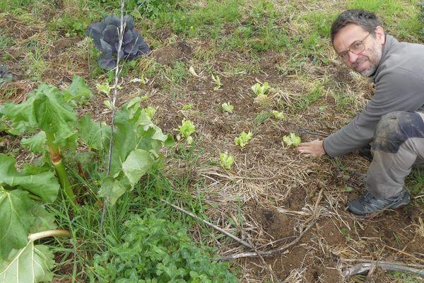 Le week-end de l'ascension est l'opportunité pour les amateurs de jardinage de prendre soin de leur potager.