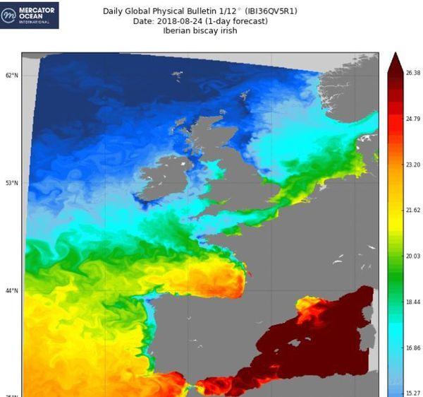 L'organisme Mercator Océan international publie tous les jours sur son site les prévisions de température de l'eau, ici les côtes du Golfe de Gascogne. L'eau est toujours aux alentours de 23/24 ° sur la côte basque.