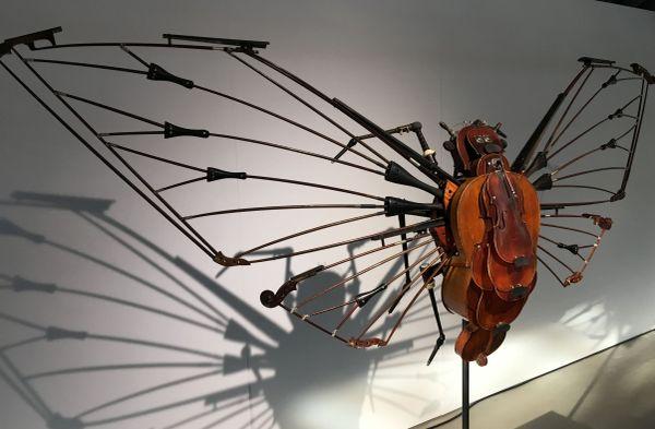 Deux mètres de large, 140 kg, la Megapomponia Merula...