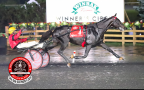 [VIDEO] Bold Eagle remporte la Breeders Crown au Canada