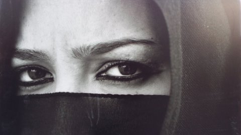 Syrian Eyes of the World  1