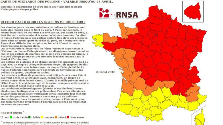 Les pollens de bouleaux battent des records — Allergies