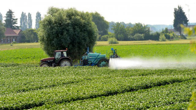 Pesticides : l'affaire Bibeyran devant la cour d'appel de Bordeaux