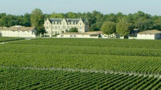 Vignoble Bordeaux documentaire