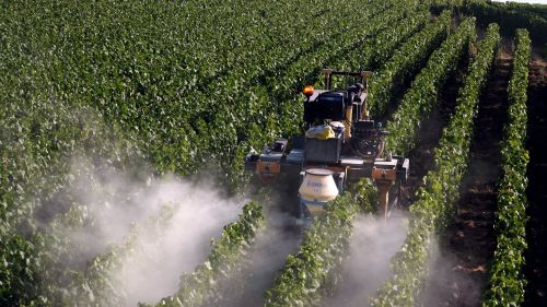 Pesticides : deux associations girondines contestent la charte du bien vivre ensemble en consultation