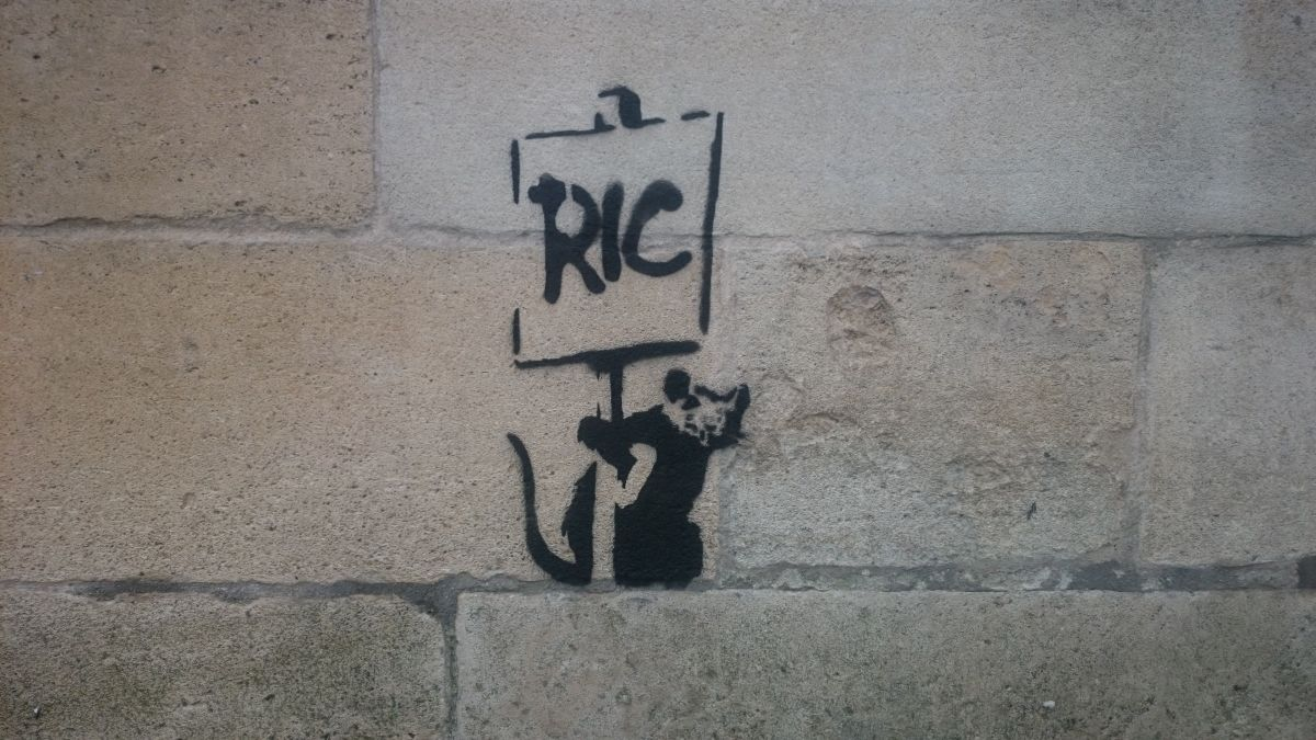 Le rat anarchique supposé de Banksy à Bordeaux. / © Iban Carpentier