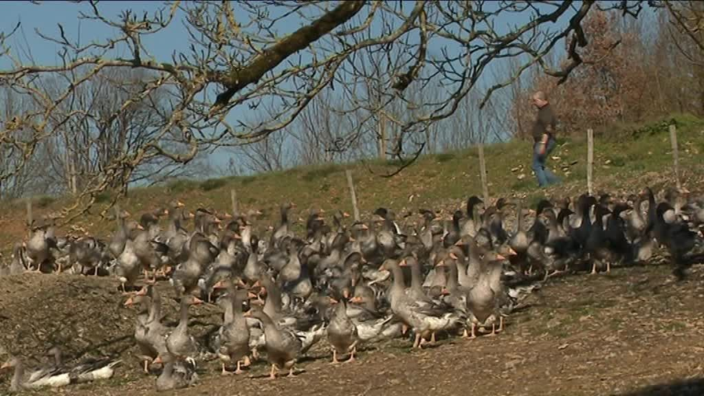 © Pascal Tinon / France 3 Périgords