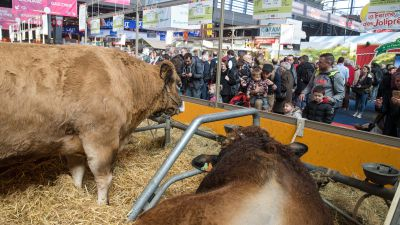 L'Occitanie en force au Salon de l'Agriculture 2018