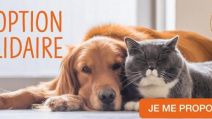 Affiche SPA Adoption solidaire