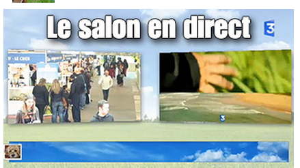 Le salon en direct