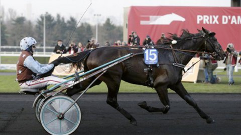 Up and Quick gagne le Grand Prix d'Amérique à Vincennes