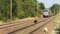 archives tgv accident France 3