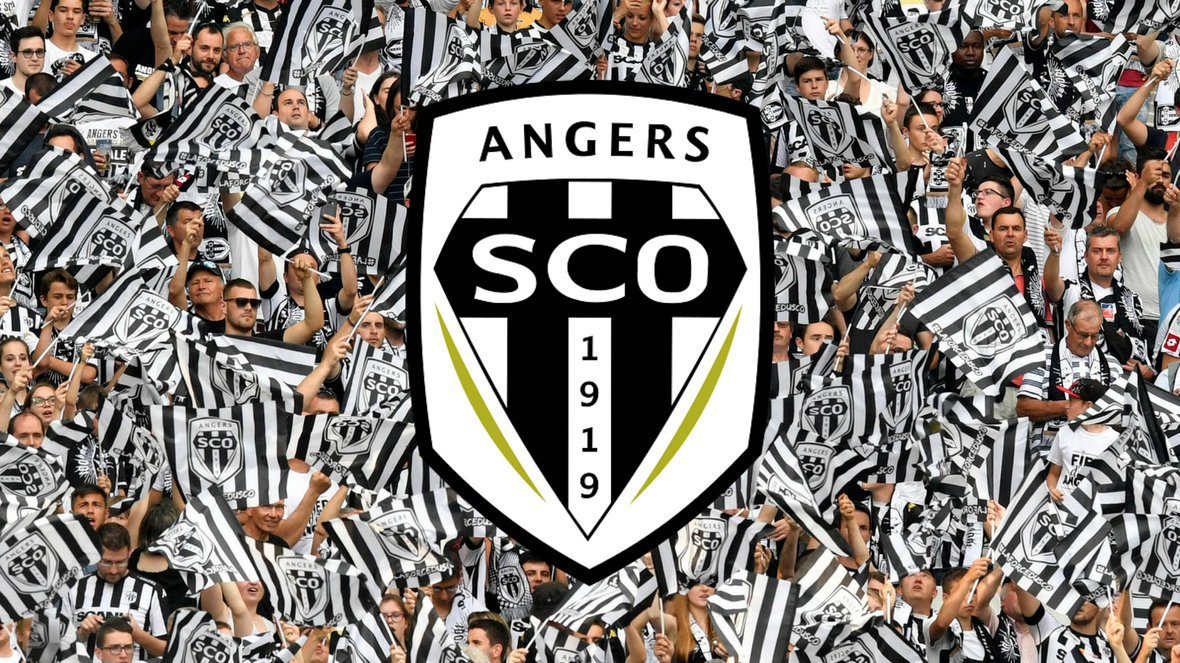 Le blason du club de football d'Angers. / © Montage MaxPPP