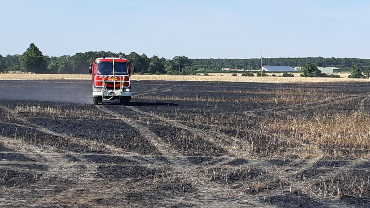Vendée : recrudescence des incendies