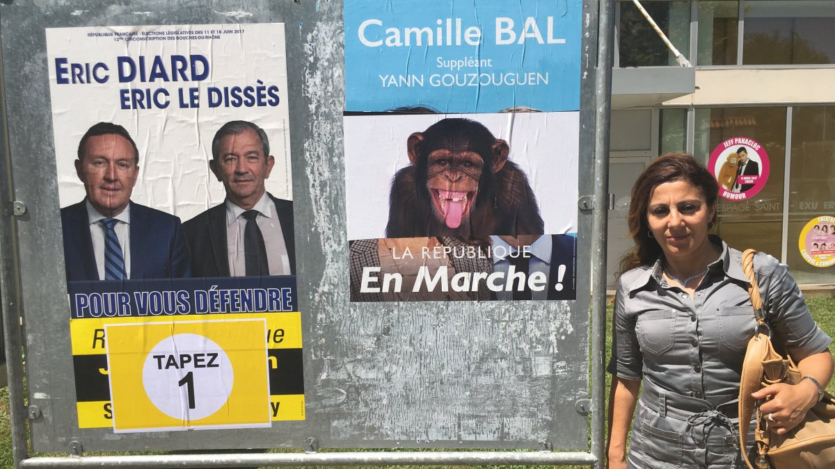 LEGISLATIVES A MARIGNANE. Des affiches de la candidate Camille Bal recouvertes de photos de singe